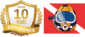 dws-badge-10years